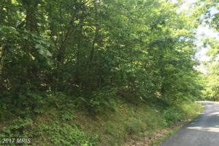 LOT #45 Timberlake Drive, James Creek, PA 16657 (#HU9706594) :: LoCoMusings