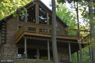 16960 Candlemoss Drive, James Creek, PA 16657 (#HU9772375) :: LoCoMusings