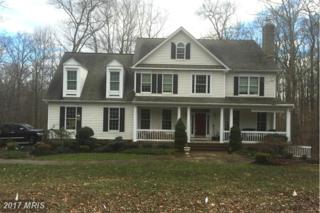 12310 Fawn River Way, Ellicott City, MD 21042 (#HW9549046) :: Pearson Smith Realty