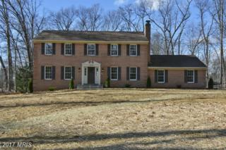 13358 Grinstead Court, Sykesville, MD 21784 (#HW9826100) :: Pearson Smith Realty