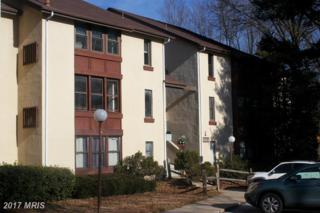5858 Thunder Hill Road B-2, Columbia, MD 21045 (#HW9827776) :: Pearson Smith Realty