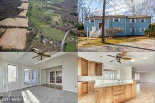 4450 Jennings Chapel Road, Brookeville, MD 20833 (#HW9868551) :: Pearson Smith Realty