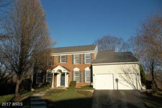 8521 Milldam Court, Ellicott City, MD 21043 (#HW9888436) :: LoCoMusings