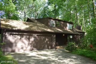 6462 Red Keel, Columbia, MD 21044 (#HW9898033) :: Pearson Smith Realty