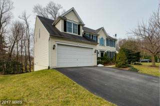 9913 Hidden Haven Court, Ellicott City, MD 21042 (#HW9905337) :: Pearson Smith Realty