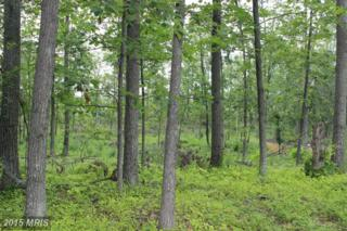 Lot 3 Off N Childs Rd, Kearneysville, WV 25430 (#JF8705929) :: Pearson Smith Realty