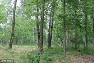 Lot 5 Off N Childs Rd, Kearneysville, WV 25430 (#JF8706905) :: Pearson Smith Realty