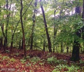 0 Maple Ridge Lane, Harpers Ferry, WV 25425 (#JF9727226) :: LoCoMusings