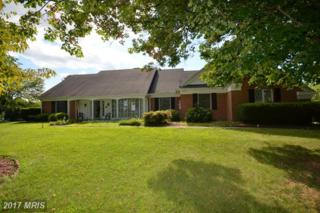 181 Fairway Dr, Charles Town, WV 25414 (#JF9744102) :: Pearson Smith Realty