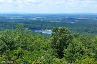 Rebels Roost Court, Harpers Ferry, WV 25425 (#JF9942678) :: Pearson Smith Realty