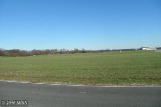 Coopers Lane, Worton, MD 21678 (#KE8736976) :: Pearson Smith Realty