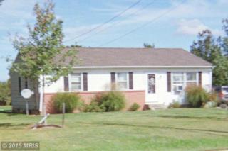 12067 Kennedyville Road, Kennedyville, MD 21645 (#KE8772588) :: Pearson Smith Realty
