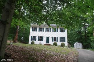 10480 Fish Hatchery Road, Chestertown, MD 21620 (#KE9676163) :: Pearson Smith Realty