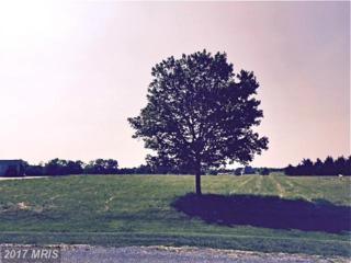 Parson Hill Court, Worton, MD 21678 (#KE9711411) :: LoCoMusings