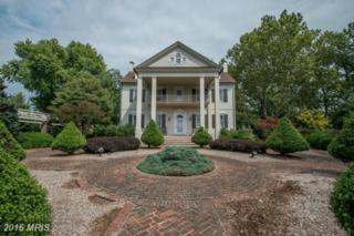 22607 Handy Point Road, Chestertown, MD 21620 (#KE9759376) :: Pearson Smith Realty