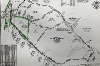 Lot 4 Off Chestnut Hill Loop, King George, VA 22485 (#KG9641030) :: Pearson Smith Realty