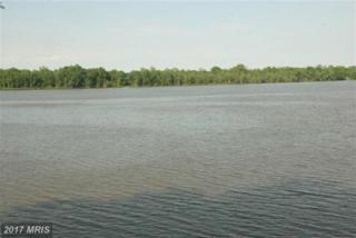 Cherwood Pond, King George, VA 22485 (#KG9682656) :: LoCoMusings