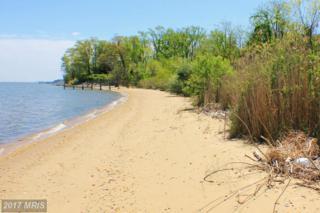 Sandy Beach Lane Road, King George, VA 22485 (#KG9701016) :: LoCoMusings