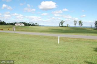 7111 Potomac Landing Drive, King George, VA 22485 (#KG9805549) :: Pearson Smith Realty