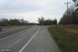 25 Route 208, Mineral, VA 23117 (#LA8706126) :: LoCoMusings