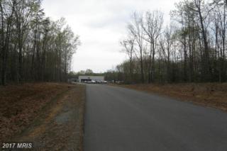 25 Route 208 Route, Mineral, VA 23117 (#LA9556769) :: LoCoMusings