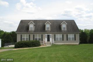30 Virginia Way, Mineral, VA 23117 (#LA9661017) :: Pearson Smith Realty