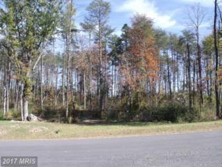 Woodland Shores Drive, Louisa, VA 23093 (#LA9708569) :: Pearson Smith Realty