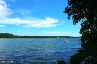 Edgewood Bay, Louisa, VA 23093 (#LA9708867) :: Pearson Smith Realty