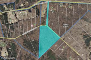 LOT 2 Freshwater Estates, Mineral, VA 23117 (#LA9739960) :: Pearson Smith Realty