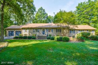420 Edgewood Drive, Mineral, VA 23117 (#LA9751454) :: Pearson Smith Realty