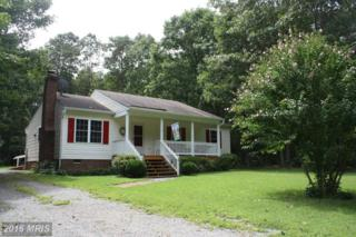 1195 Belsches Road, Bumpass, VA 23024 (#LA9795117) :: Pearson Smith Realty