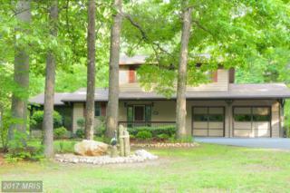 120 Lakewood Circle, Mineral, VA 23117 (#LA9886860) :: Pearson Smith Realty