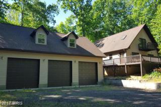 430 Lakewood Drive, Mineral, VA 23117 (#LA9911035) :: Pearson Smith Realty