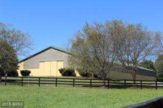 20370 Woodtrail Road, Round Hill, VA 20141 (#LO8758027) :: Pearson Smith Realty
