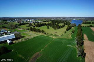 24282 Quail Ridge Lane, Aldie, VA 20105 (#LO9624447) :: LoCoMusings