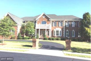 43574 Old Kinderhook Drive, Ashburn, VA 20147 (#LO9637081) :: Pearson Smith Realty