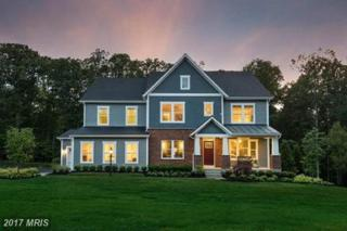 1 Jawaher Place, Aldie, VA 20105 (#LO9679912) :: Pearson Smith Realty