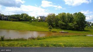 17541 Francis Farm Place, Hamilton, VA 20158 (#LO9685534) :: Pearson Smith Realty