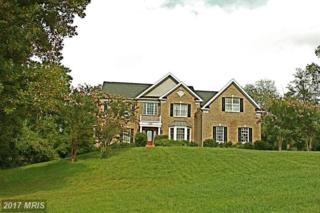 41278 Dutton Court, Waterford, VA 20197 (#LO9755034) :: Pearson Smith Realty