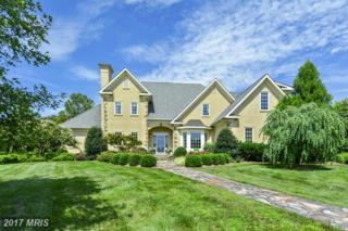 37282 Mountville Road, Middleburg, VA 20117 (#LO9755698) :: LoCoMusings