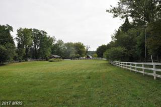 Simpson Circle, Paeonian Springs, VA 20129 (#LO9770457) :: LoCoMusings