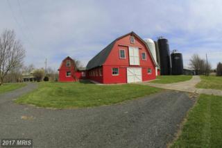 40950 Simpson Farm Lane, Lovettsville, VA 20180 (#LO9771173) :: Pearson Smith Realty