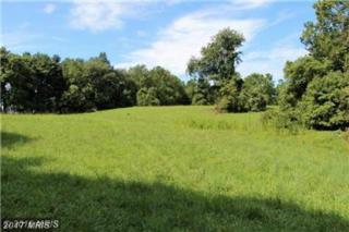Snickersville Turnpike, Middleburg, VA 20117 (#LO9780903) :: Pearson Smith Realty