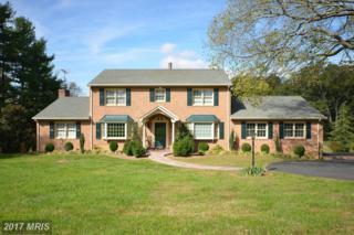 20435 Gleedsville Road, Leesburg, VA 20175 (#LO9787650) :: Pearson Smith Realty