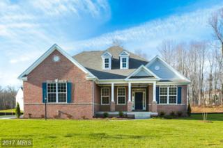 2 Lenah Trails Place, Aldie, VA 20105 (#LO9794216) :: Pearson Smith Realty