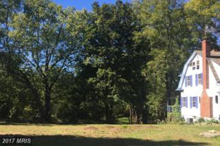 18179 Lincoln Road, Purcellville, VA 20132 (#LO9795189) :: LoCoMusings