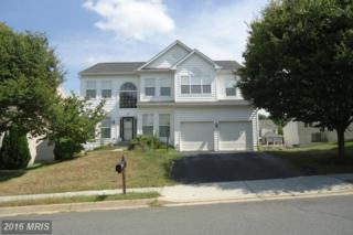 438 Loudoun Valley Drive, Purcellville, VA 20132 (#LO9812894) :: Pearson Smith Realty