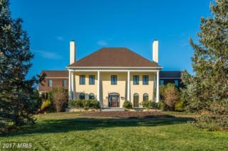 35170 Poor House Lane, Round Hill, VA 20141 (#LO9817239) :: Pearson Smith Realty