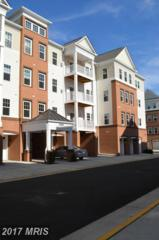43138 Stillwater Terrace #204, Broadlands, VA 20148 (#LO9819981) :: Pearson Smith Realty