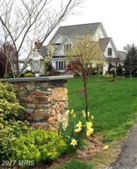 20560 Furr Road, Round Hill, VA 20141 (#LO9824701) :: Pearson Smith Realty